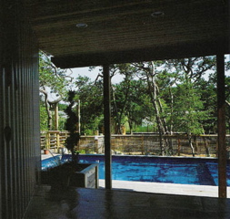 Pool from front entry